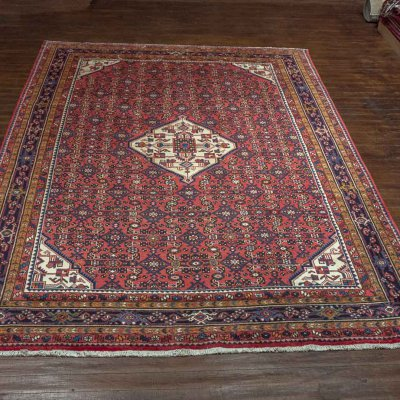 Hand Knotted Hosseinabad Rug From Iran (Persian)