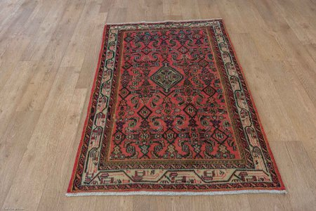 Hand-Knotted Hamadan Rug From Iran (Persian)